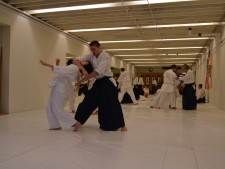Traditional Aikikai Aikido